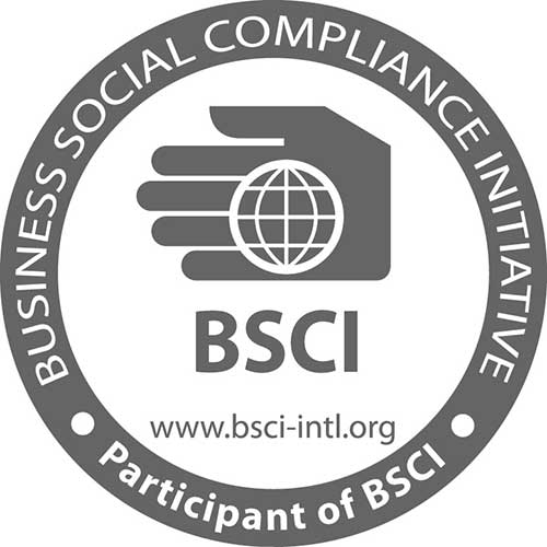 The Business Social Compliance Initiative (BSCI)
